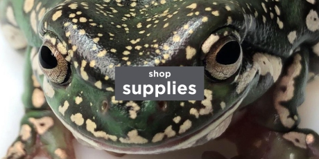 shop buttons3